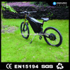 strong electric bike carbon steel frame off-road bike with pas sensor