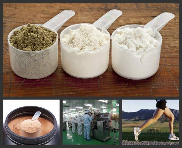 Private Label Protein Powder Wholesale for Weight Gain