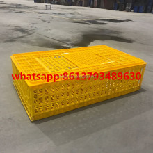 2017 Best selling chicken/broiler plastic transportation crate/cage/box with big size 95*55*27