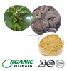 Gallnut Extract ellagic acid / Gallnut Extract Powder / Gallnut Powder
