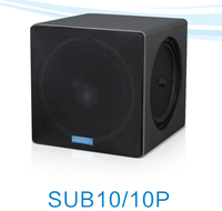 200W Wholesale Pa System Active Subwoofer speaker SUB10P