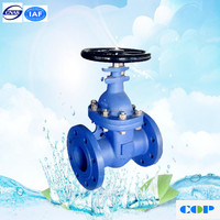 China manufacture 4 inch water Pn16 gate valve