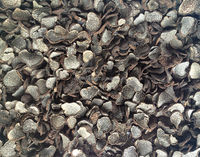Dried truffle tuber indicum black truffle