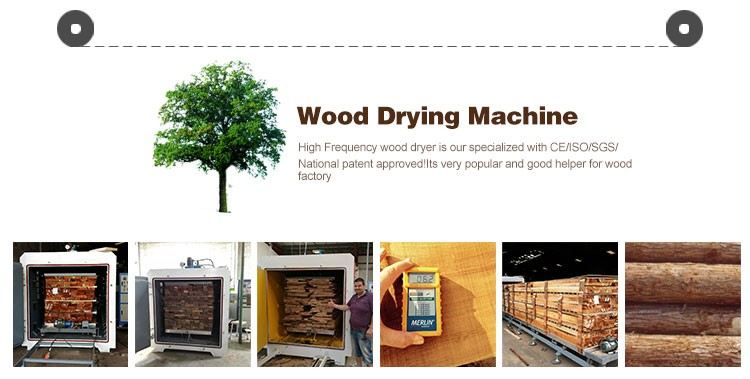 HF/RF vacuum walnut/maple/beech/ash wood slab drying kiln
