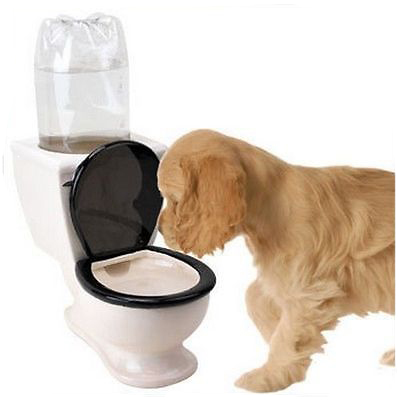 Toilet Shaped Water Dispenser Animal Bowl For Sale