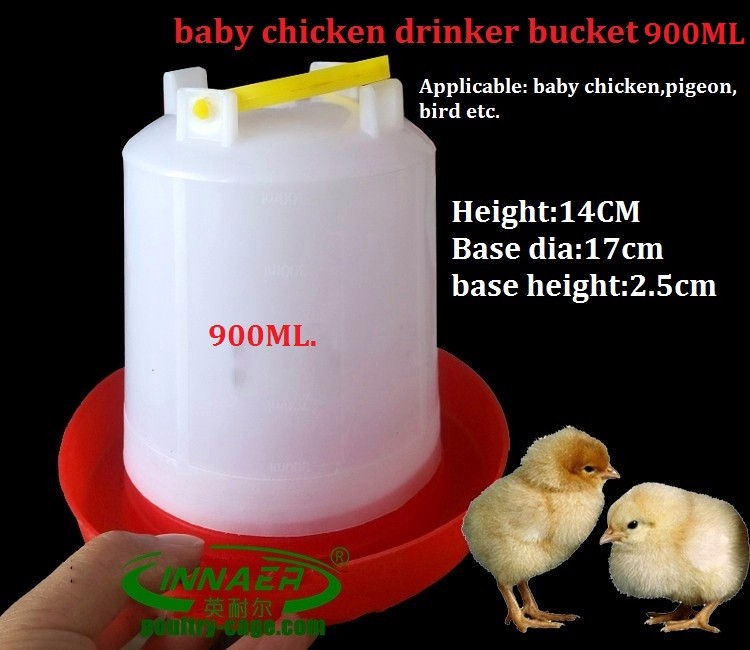 automatic drinking and feeding system for chicken farm
