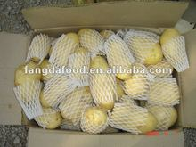 china Popular Farm Fresh Potato