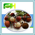100% Natural Lychee Skin Extract