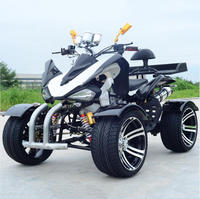 high quality Racing 250CC ATV street legal dune buggies with shaft drive