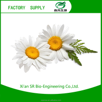 SR Organic Dried Chamomile Flower Extract Powder/chamomile Extract