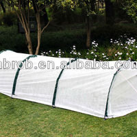 Garden Agricultural Plastic Tunnel Greenhouse With