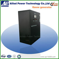 300g/h water purifier ozone generator for food industry