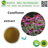 Indian Echinacea Powder Herb P.E Polyphenols&Cichoricacid