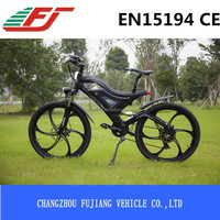 FUJIANG electric bicycle, electric bicycle magnetic motor, electric bicycle battery lock with EN15194