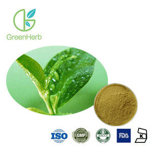 ISO Green Tea Leaf P.E. Polyphenols 99% HPLC,green tea leaf extract