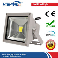 Bridgelux IP65 50W Narrow Beam Waterproof EX Floodlight