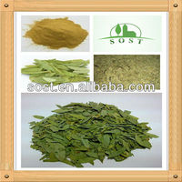 2013 new product high quality organic senna leaf extract