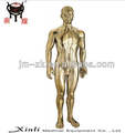 Factory outlet Copper male torso model with acupoint