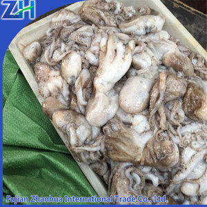 fresh live frozen octopus/ seafood baby octopus wholesale price