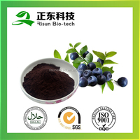 Powder Form Bilberry Extract 25% Anthocyanins