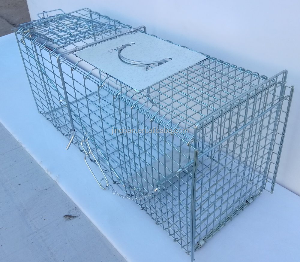 Folding mouse trap cage, rat trap cage, wire mouse trap cage