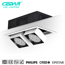 Patent Product Led Grille Down Lights 25w*2,Adjustable Grid Light