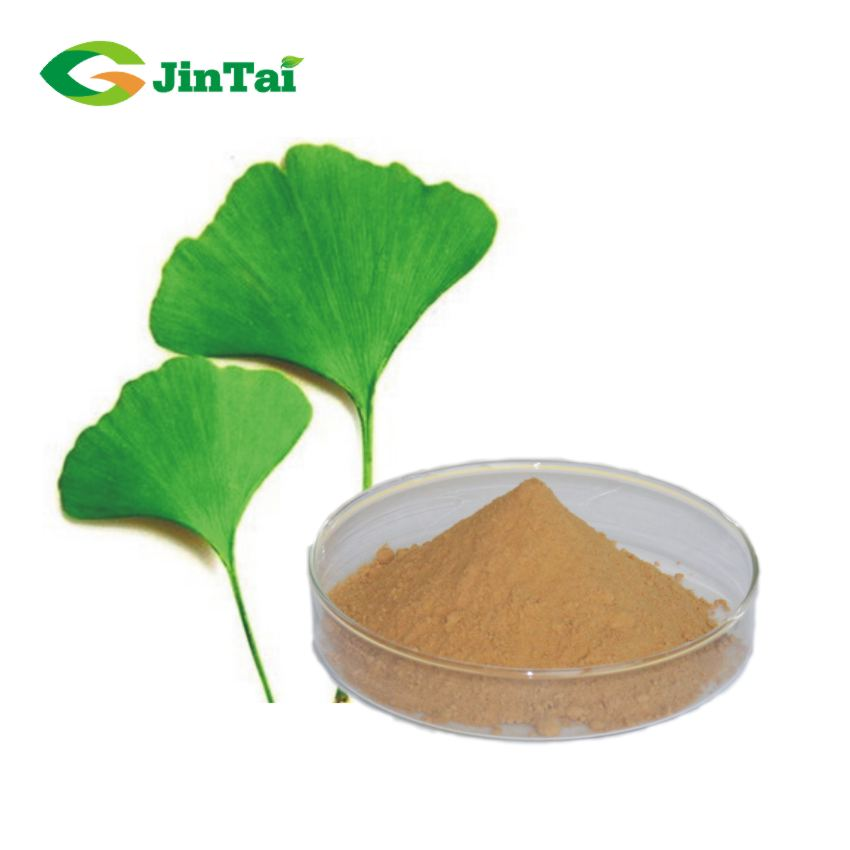 Ginkgo biloba leaf extract flavone 24% lactones 6%