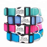 Personalized Custom Quick Release Metal Buckle Nylon Webbing Pet Dog Collar With Engraved Name