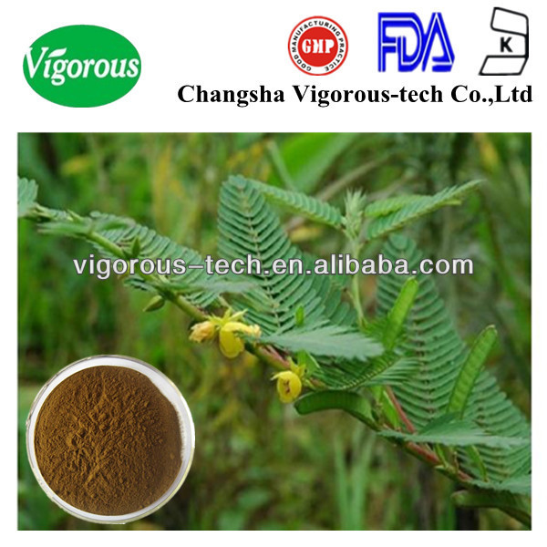 Natural 8% dimer flavone weigh loss Cassia Nomame Extract
