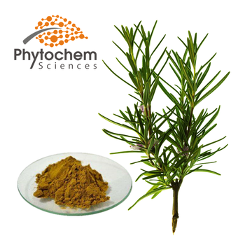 bulk price soluble rosemary extract powder