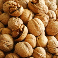Baked Walnut Food Flavour With Full