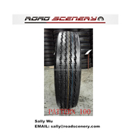 High quality China 11R22.5 16PR radial trailer tires Pattern 100