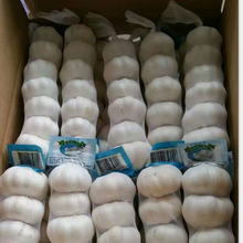Plastic garlic peeled made in China