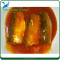 healthy food canned mackerel in tomato sauce