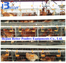 hot-selling chicken battery cage for Kenya, Nigeria poultry farm auto chicken battery cages for egg layer