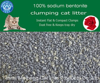 Cats Application crushed bentonite cat sand