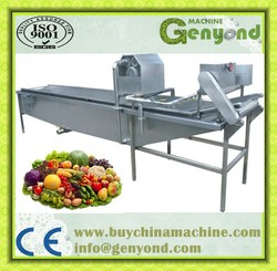 Small Vegetable and Fruit Washing Machine for food