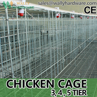 China wholesale chicken egg layer cages / cages chicken/ used chicken cages for sale