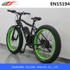 Green power fat ebike, electric mountain bike with fat tires