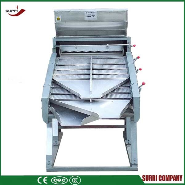 SURRI Tea farmer using tea stalk sorter