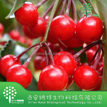 Best Selling High Quality Acerola Cherry Extract Vc17% Acerola Cherry P.E. or Acerola Cherry E.P.