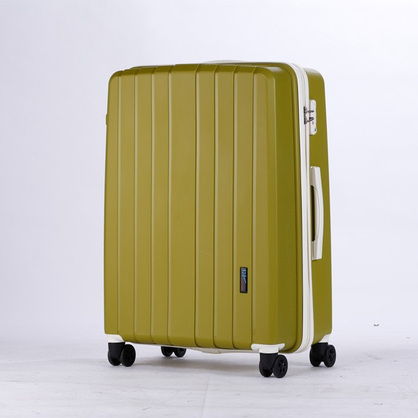 *new kids trolley hard case luggage