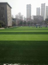 Top Quality quick dry wholesale artificial lawn grass