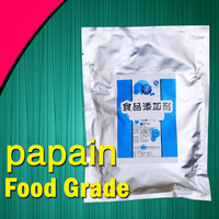 Pure natural papain meat tenderizer powder