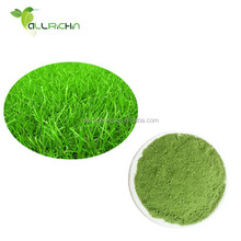 Premium Organic Wheat Grass Powder