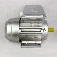 0.75kw 1 hp induction motor single phase vibrating motor YL801-2