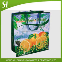 China Wenzhou Recycled Plastic Coated Tote Bags