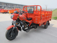 chinese mini car/three wheel cargo motorcycles/trike gas scooter