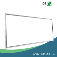 2x4ft LED Ceiling Panel Light