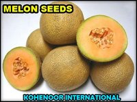GOOD QUALITY MELON SEED